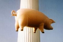 Το φουσκωτό γουρούνι και η μεγάλη επιστροφή