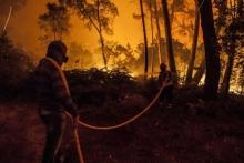 Το λόμπι του χαρτιού πίσω από την φονική φωτιά στην Πορτογαλία;